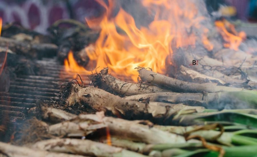 Barcelona: Things to do in March – Gastronomic tradition of Calçotada