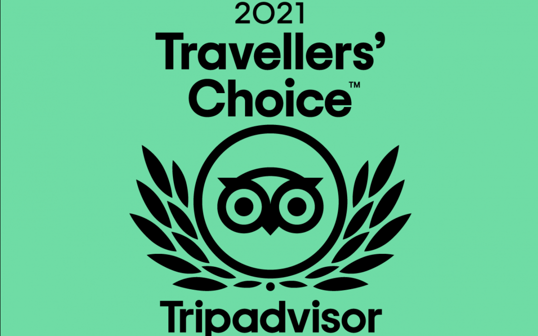 "The Barcelona Feeling Wins 2021 Tripadvisor Travelers' Choice Award for ""Tours in Barcelona"""